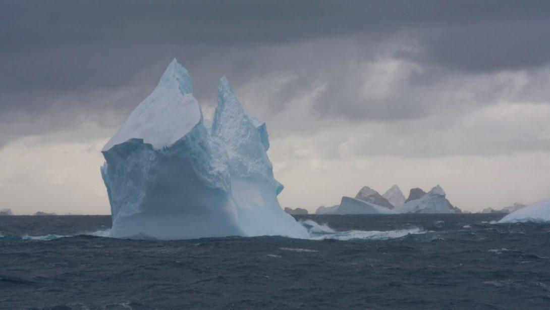 Sommerlig i Antarktis
